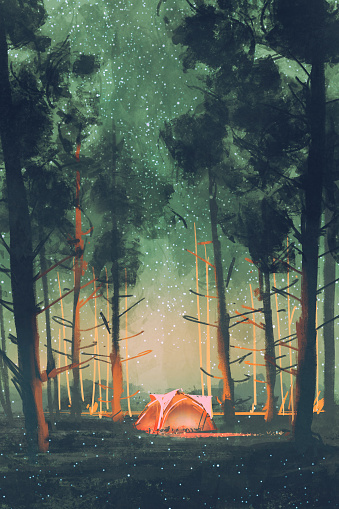 camping in forest at night with stars and fireflies