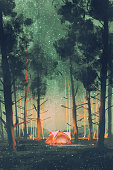 istock camping in forest at night with stars and fireflies 584575380