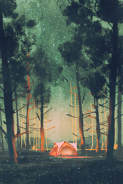 camping in forest at night with stars and fireflies vector art illustration