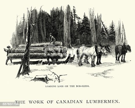 Vintage engraving of Canadian lumbermen loading logs on bobsleds, 1892