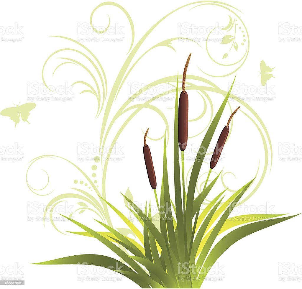 Cane and grass with floral ornament royalty-free stock vector art