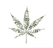 Cannabis leaf with dollar texture, white background