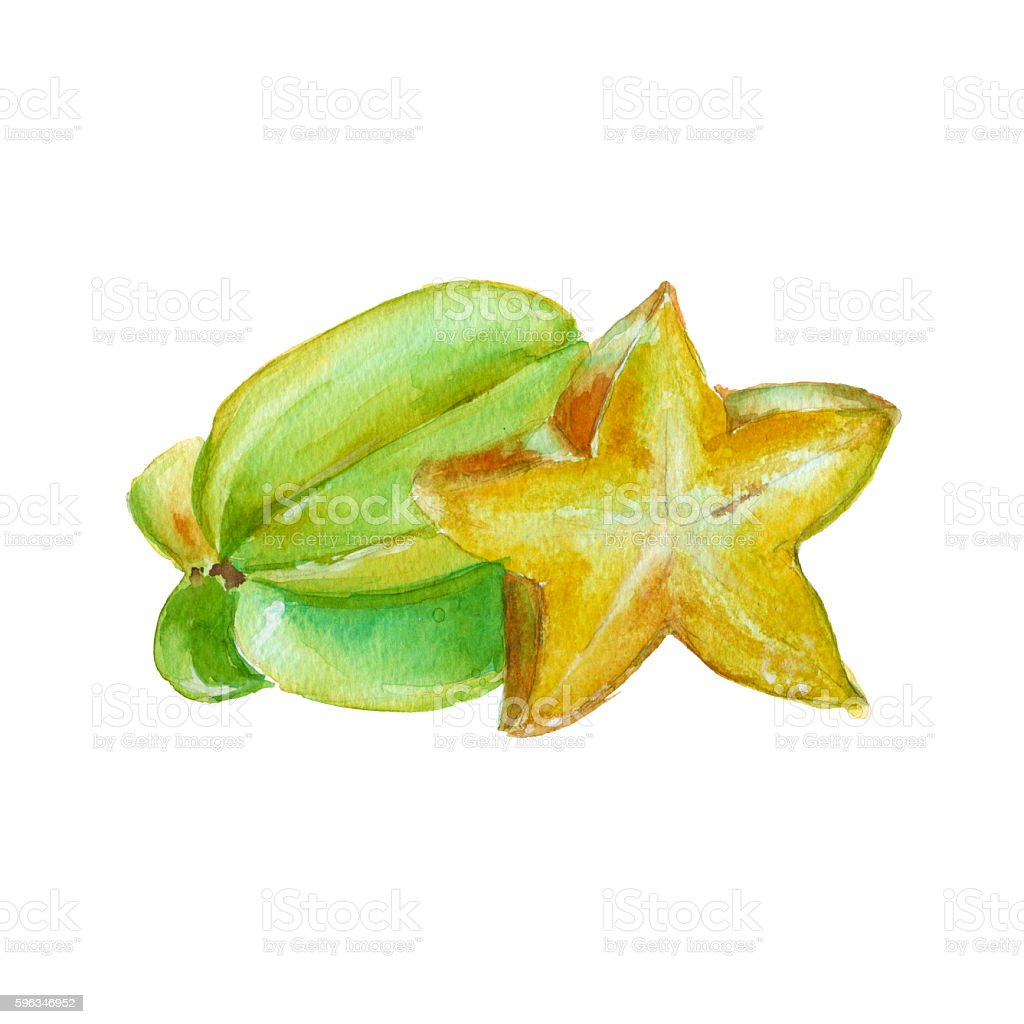 carambola. isolated on a white background. watercolor illustration. Lizenzfreies carambola isolated on a white background watercolor illustration stock vektor art und mehr bilder von aquarell
