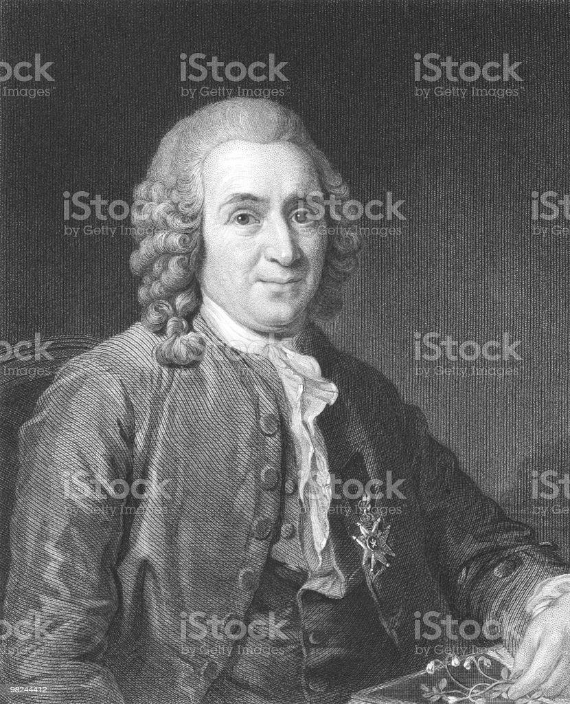 Carl Linnaeus royalty-free carl linnaeus stock vector art & more images of adult