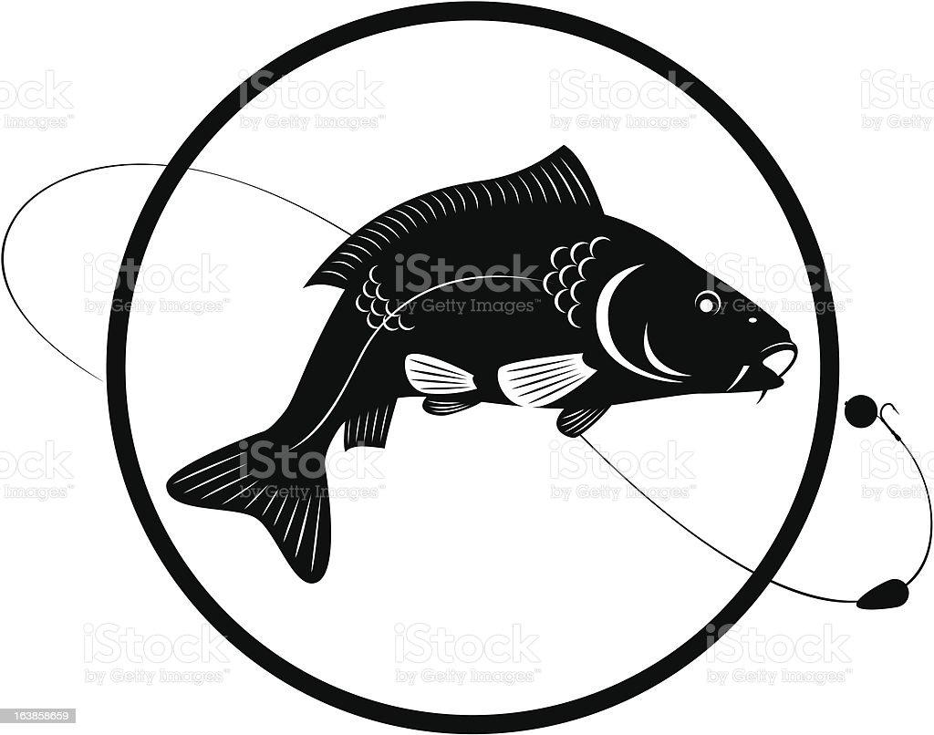 carp vector art illustration