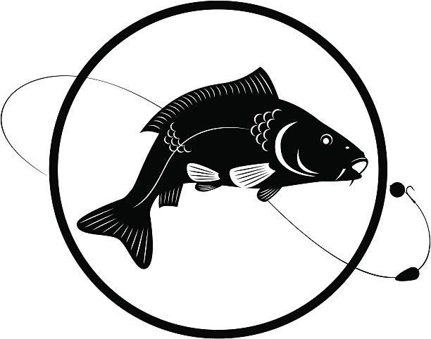 stockillustraties, clipart, cartoons en iconen met carp - carp