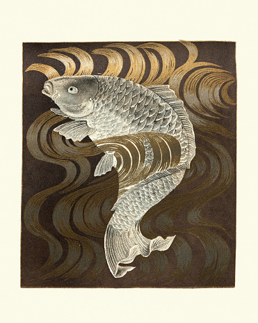Vintage illustration of Art of Japan, Japanese print of Carp swimming upstream, after a Fukusa, a type of Japanese textile used for gift-wrapping or for purifying equipment during a Japanese tea ceremony.