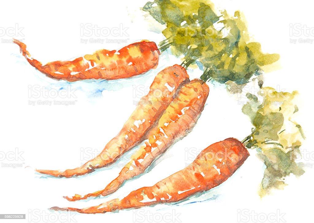 Carrots on white, Carrot art ilustração de carrots on white carrot art e mais banco de imagens de cenoura royalty-free