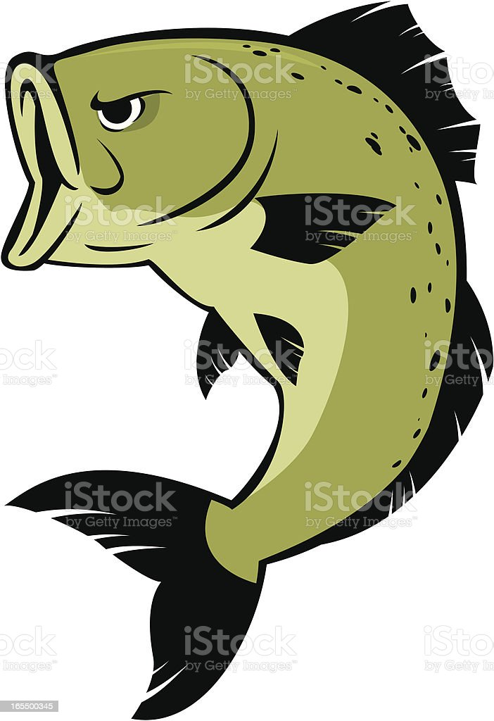 cartoon bass vector art illustration