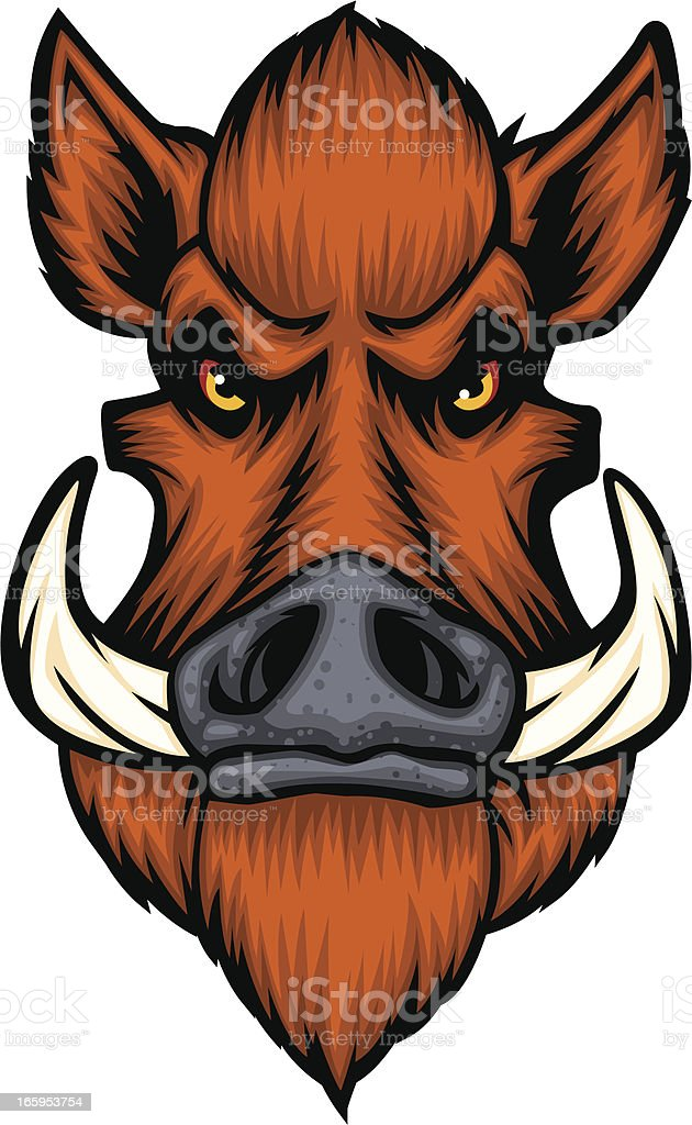 cartoon boars head vector art illustration