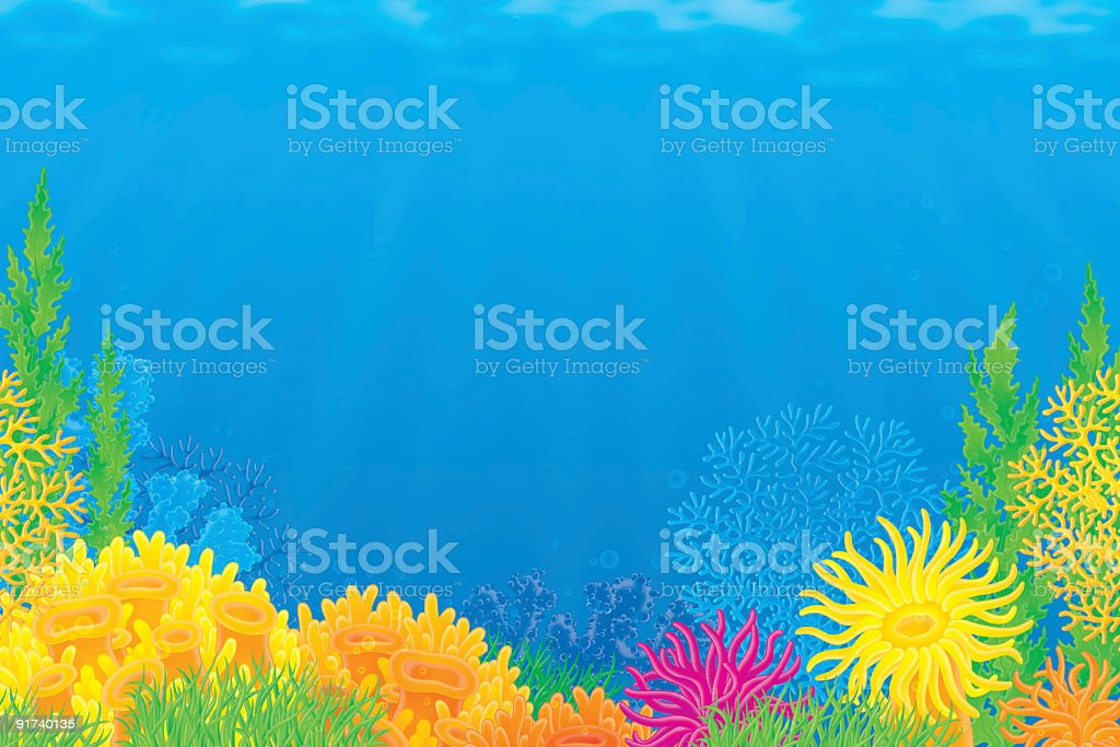 a cartoon image of a bright and colorful coral reef stock vector art