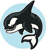 cartoon killer whale mascot