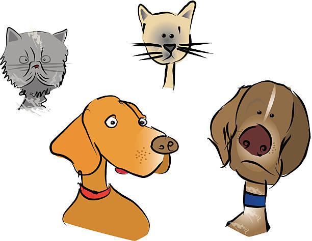 comic haustiere - vizsla stock-grafiken, -clipart, -cartoons und -symbole