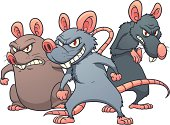 Three evil looking cartoon rats. Vector illustration with simple gradients. All in separate layers for easy editing.