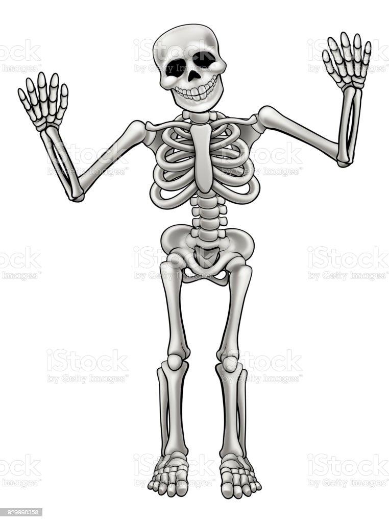 Cartoon Standing Skeleton vector art illustration