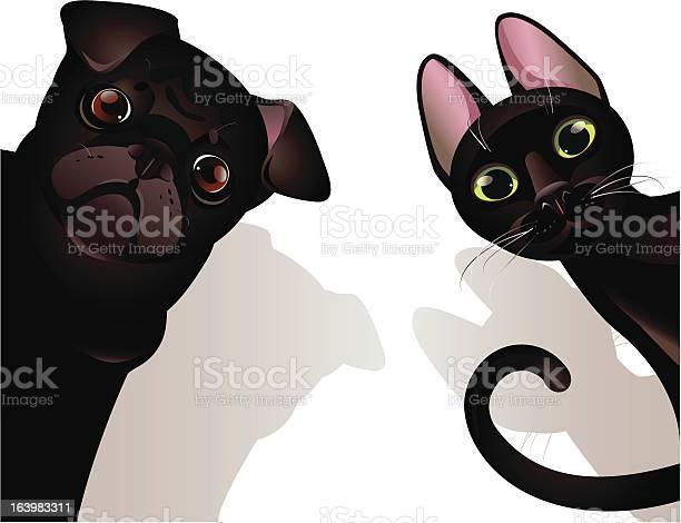 Cat and dog illustration id163983311?b=1&k=6&m=163983311&s=612x612&h=l4nqjnbbugxjcihhqdbdydr kyl9ie3mge09xt7bu1a=
