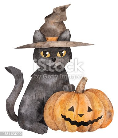 istock cat in witch hat 1331123220