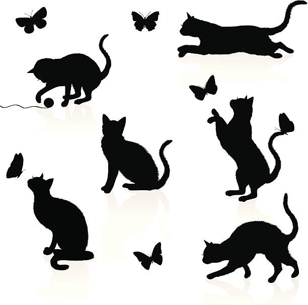 stockillustraties, clipart, cartoons en iconen met cats and butterflies. - kat