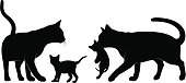 Detailed silhouettes set of a cats family.
