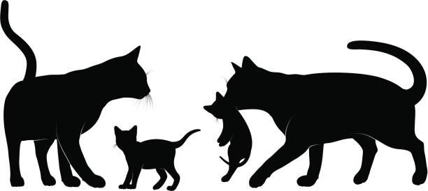 猫ファミリです。 - 子猫点のイラスト素材/クリップアート素材/マンガ素材/アイコン素材