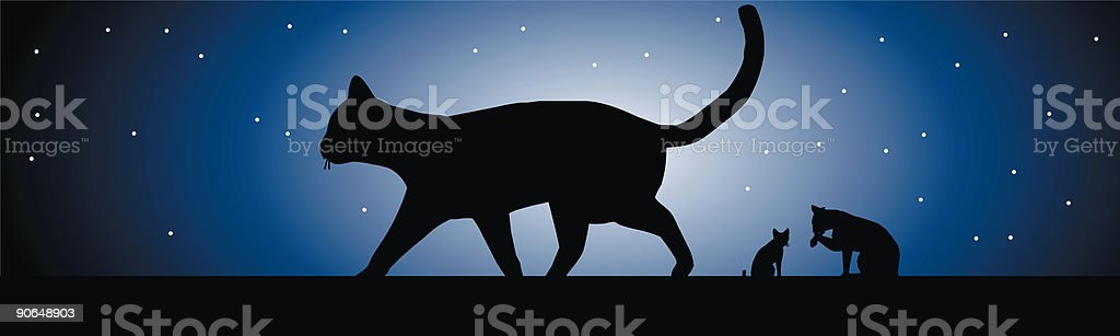 Cats in the moonlight royalty-free stock vector art