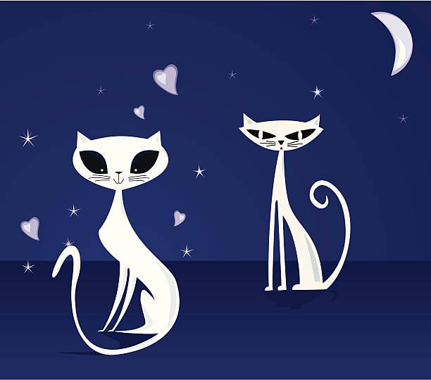 Cats in the night vector art illustration