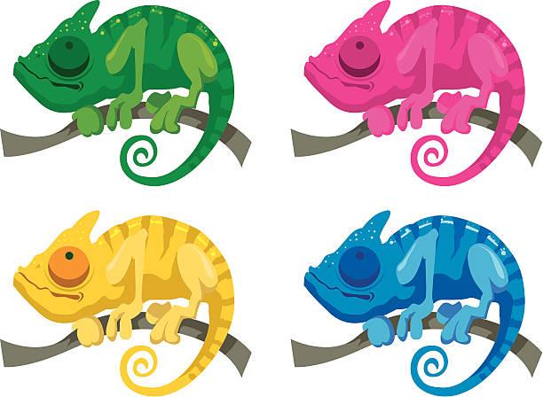 chameleons - chameleon stock illustrations