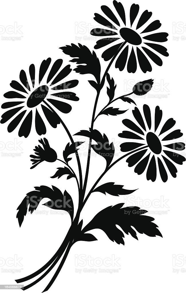 Chamomile flowers, silhouettes vector art illustration