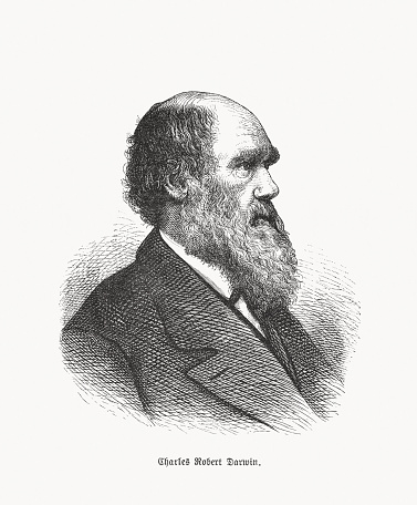Charles Darwin (1809-1882), British natural scientist, wood engraving, published in 1893