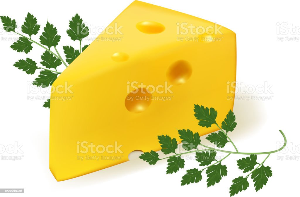 Cheese with parsley. royalty-free stock vector art