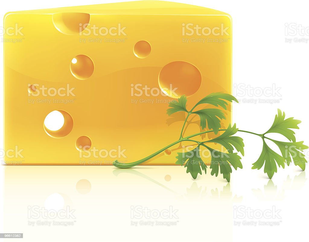 Cheese with spice vector art illustration