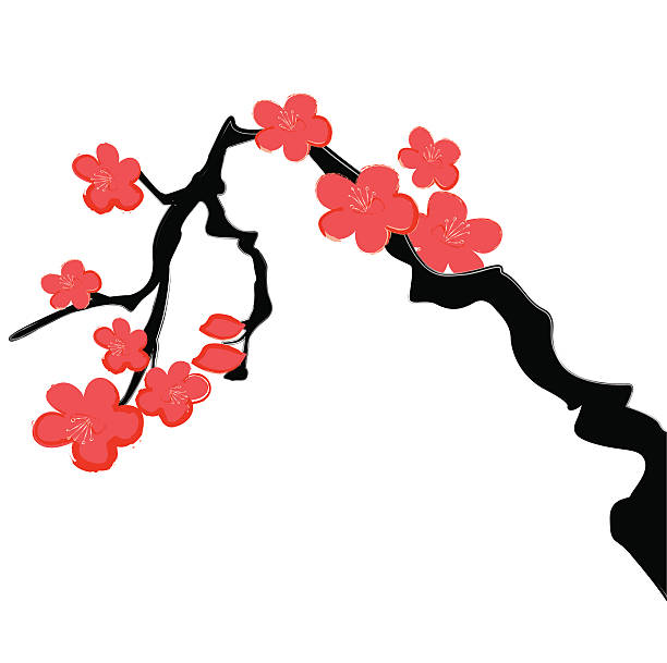 Cherry Blossom Calligraphy Painting  peach blossom stock illustrations