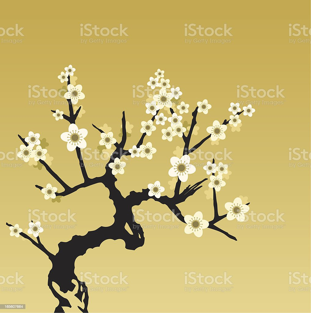 Cherry Blossom royalty-free cherry blossom stock vector art & more images of art