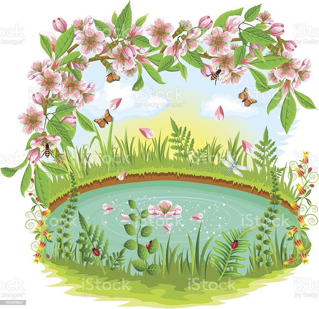 cherry blossom in the spring royalty-free stock vector art