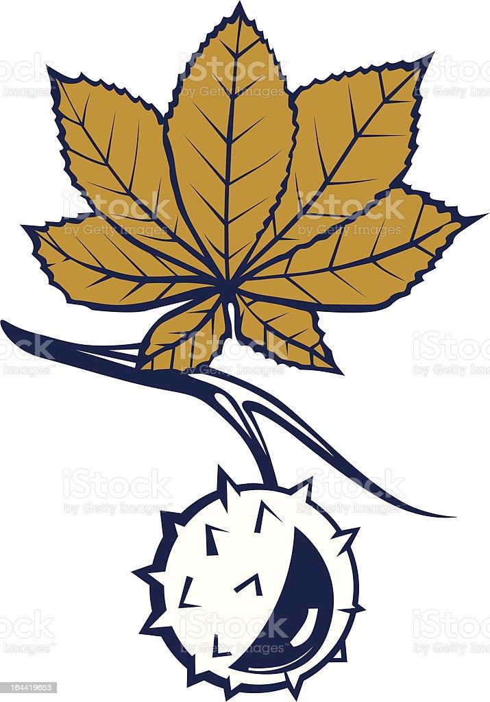 chestnut leaves with nut vector art illustration