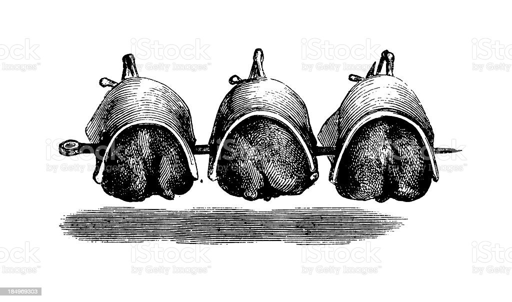 Chickens cooked on rotisserie | Antique Culinary Illustrations royalty-free stock vector art