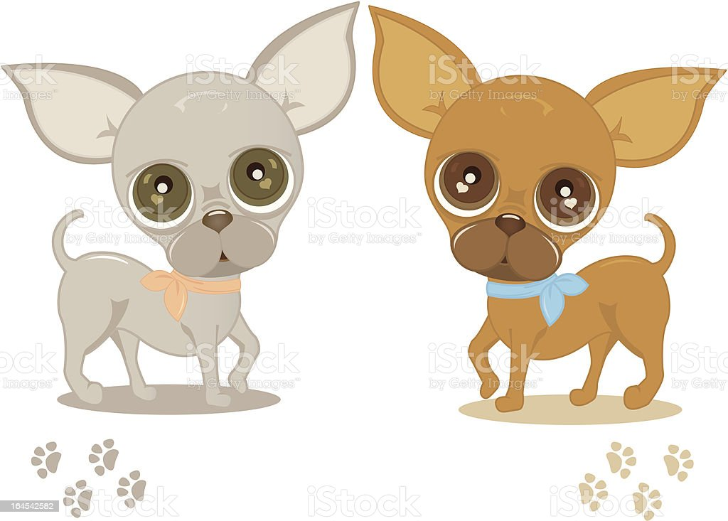 Chiwawa royalty-free stock vector art