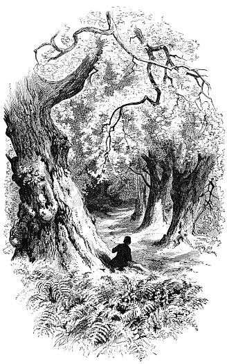 Child looking down a long path lined with pine trees in Voices of the Night from Poetical Works of Henry Wadsworth Longfellow. Vintage etching circa mid 19th century.