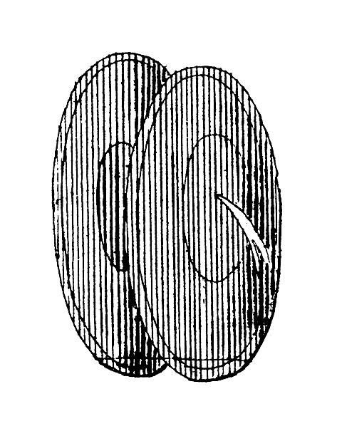 chiński cymbały/antyczne muzyczne ilustracje - talerz perkusyjny stock illustrations