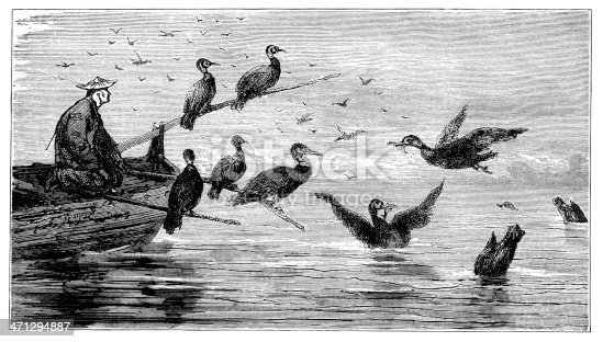 A Chinese man fishing with a trained flock of cormorants. Illustration from