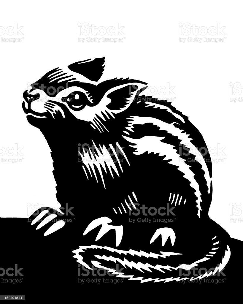 Chipmunk royalty-free chipmunk stock vector art & more images of animal hair