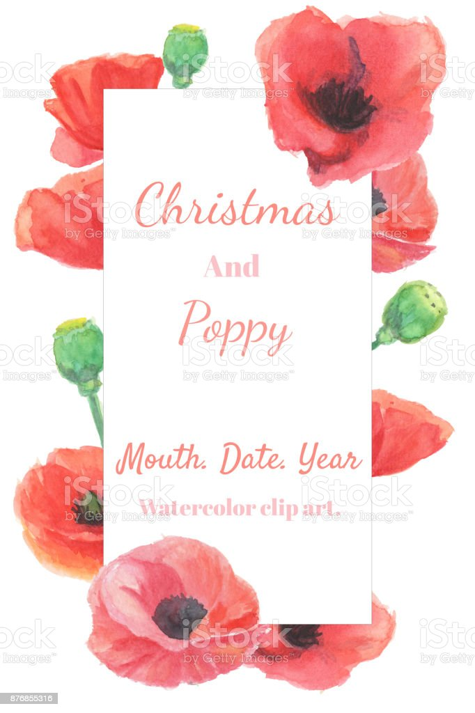 christmas and new year card watercolor clip art with red poppy frame the image