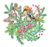 Christmas and New Year holiday emblem with woodpecker bird, twig leaves, berry, cone isolated on white. Hand drawn vintage watercolor illustration with design element for greeting cards, invitations.