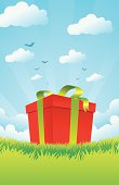 Christmas Gift Box on the Green Grass with the blue sky background.