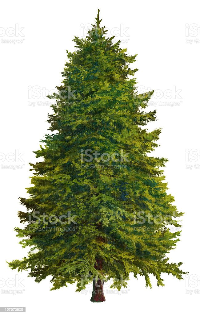 A Christmas tree on a white background vector art illustration