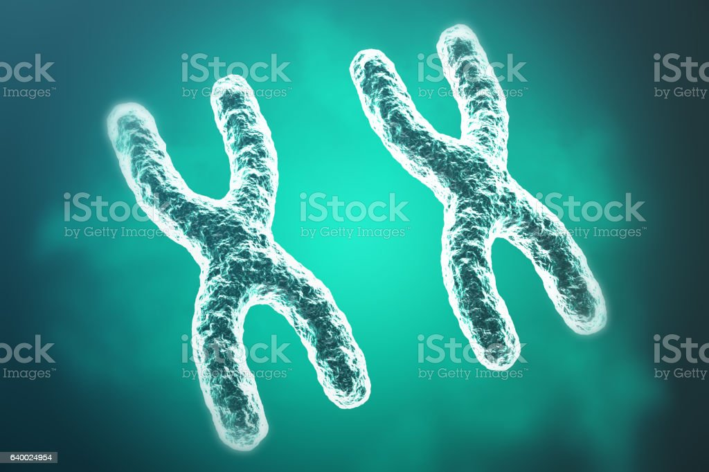 Chromosomes on scientific background. Life and biology, medicine . 3d rendering vector art illustration