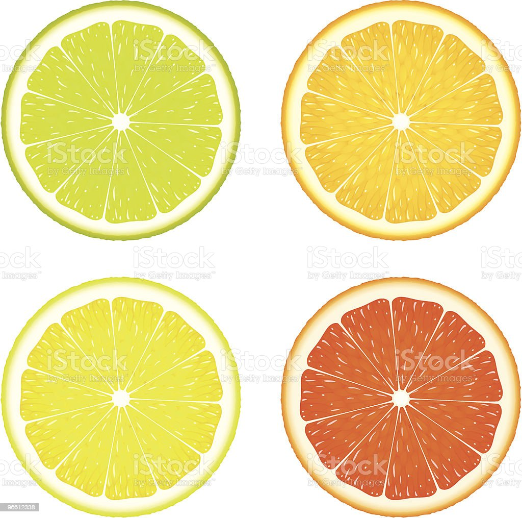 Citrus Four - Royalty-free Circle stock vector