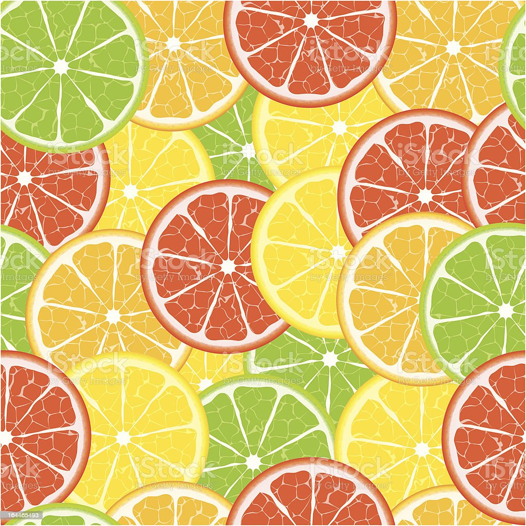 citrus vector seamless royalty-free stock vector art