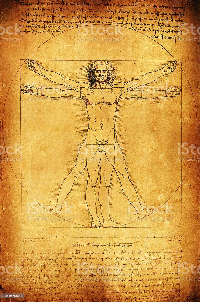 Classic Leonardo Davinci Human Anatomy Drawing Stock Vector Art