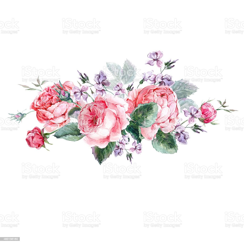 Classical vintage floral greeting card, watercolor bouquet of English roses vector art illustration